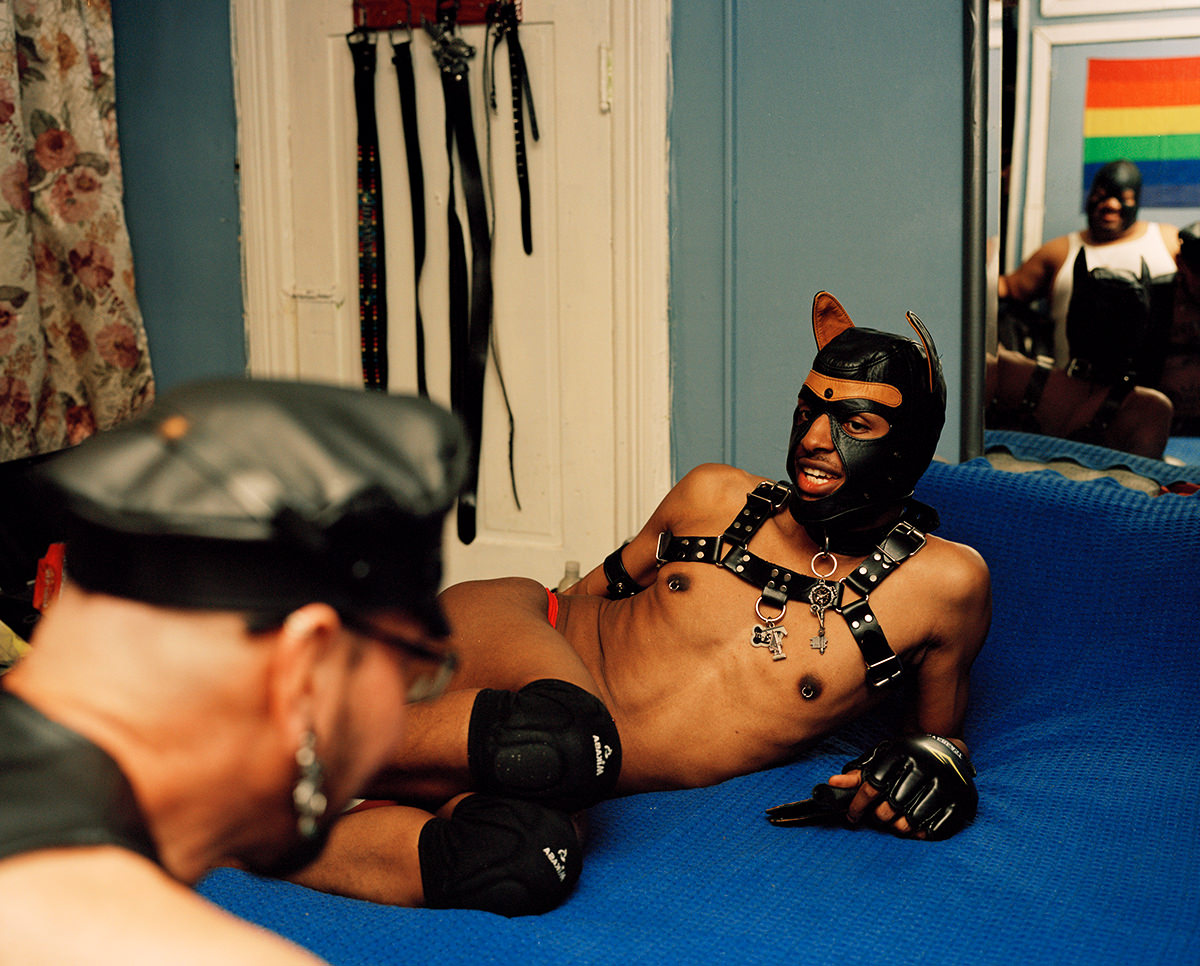 Master-Joe-and-Pup-Tut_GAYLETTER